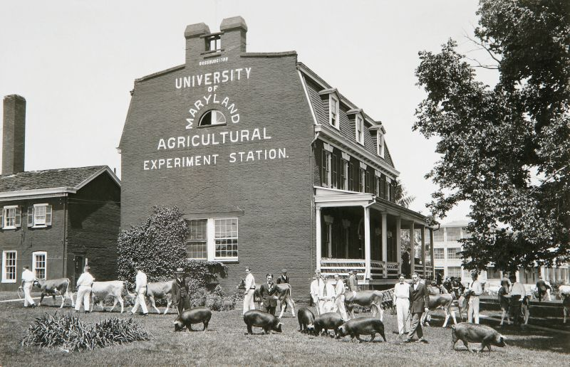 Rossborough Inn-Agricultural Livestock Show 1924